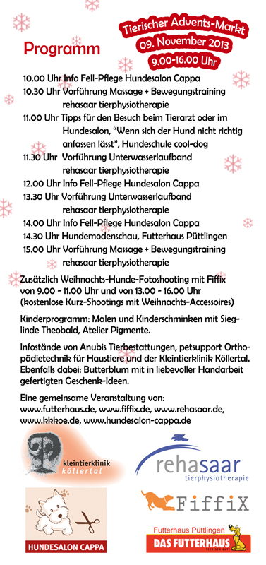 Flyer Püttlingen1