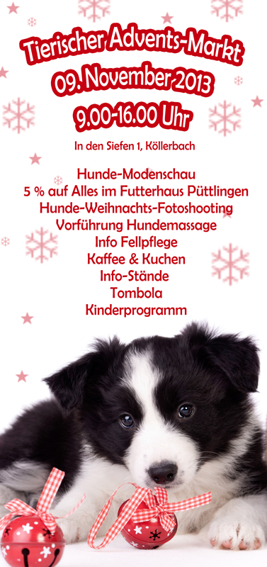 Flyer Püttlingen2